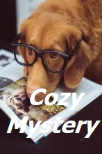 Great Reads Cozy Mystery Books