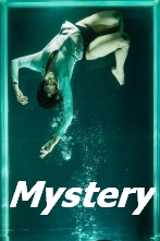 Great Reads Mystery Books