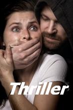 Great Reads Thriller Books